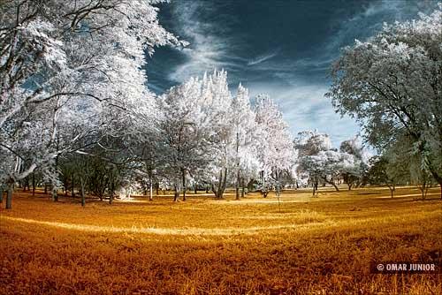 ParqueMarinhadoBrasilInfrared89