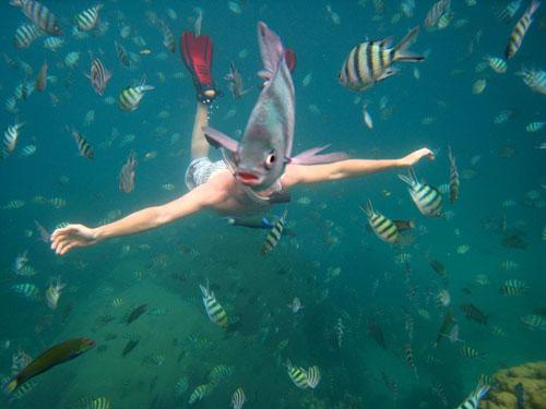 snorkeler-underwater-thailand_102