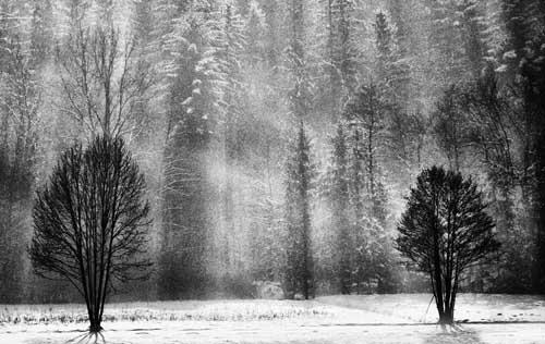 wintermidday31