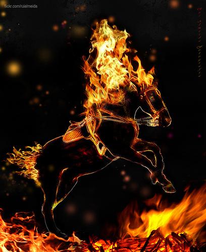 burning_horse_20