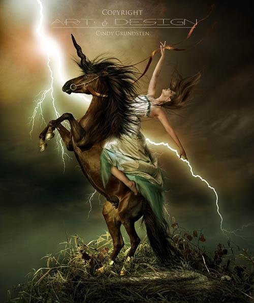 horse_photo_manipulation_29