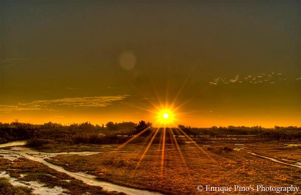Sunrise at Robinson Preserve HDR63