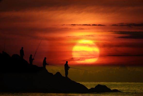 Sunset50