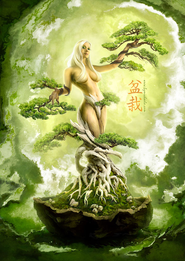 bonsai_photo_manipulation_18