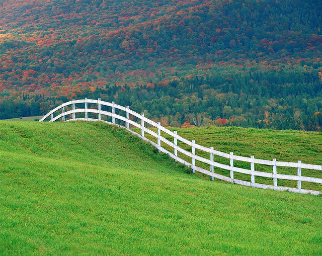 curved_white_fence_19