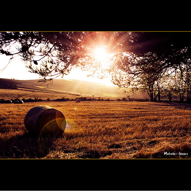 lens_flare_photography_18