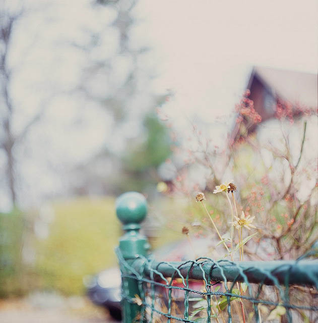 skips_by_leslie_thomson_9