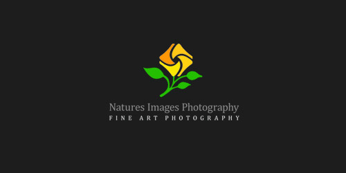 nature_images_photography_57