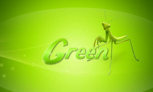 How to Make a Simple Green Wallpaper in Photoshop _17