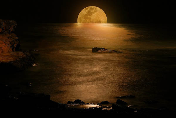 Moonlight of Gold_3