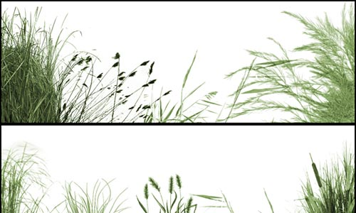 The_Grasslands_53