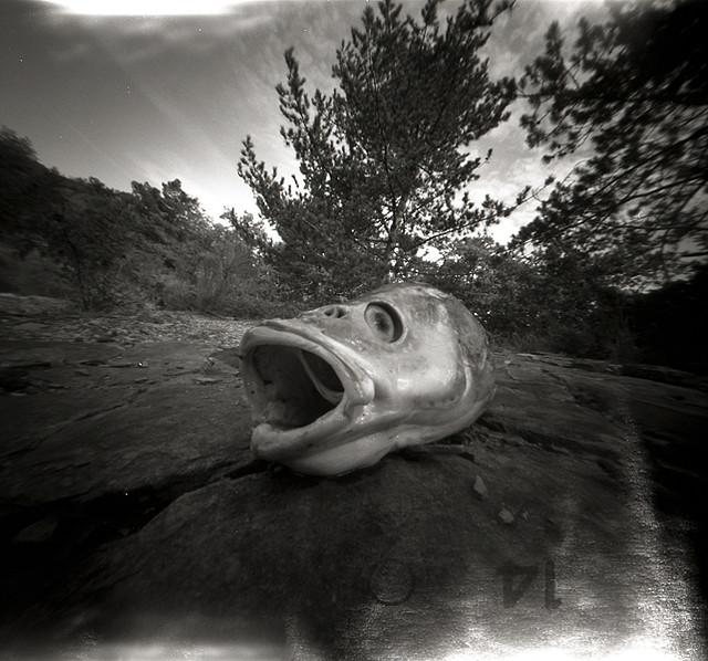 camera_obscura_6