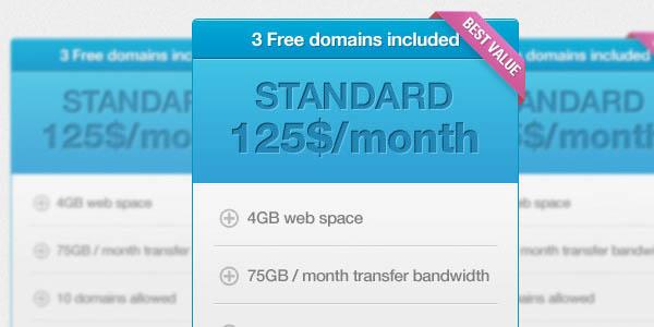 Web 2.0 Style Pricing Box_94