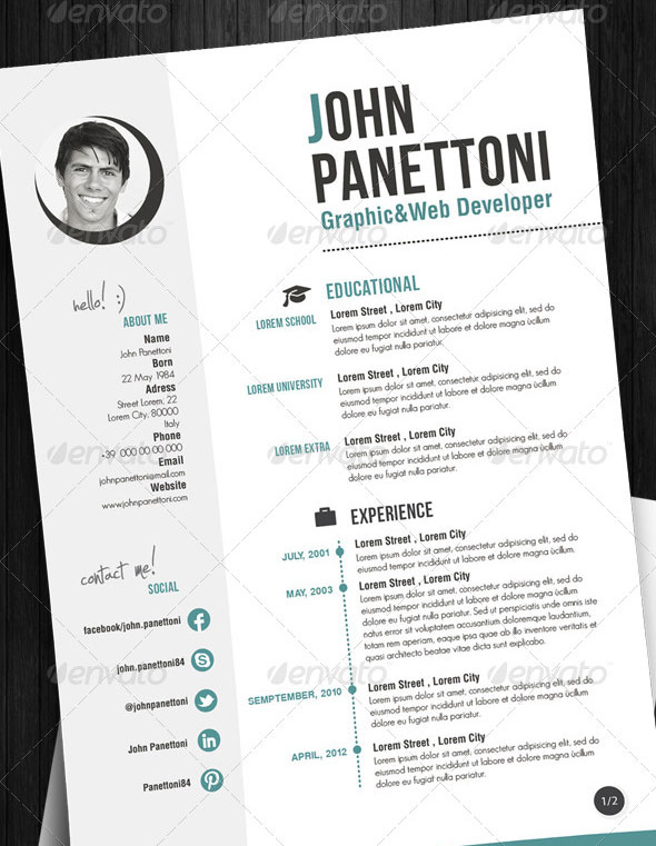 Professional Easy Resume/CV