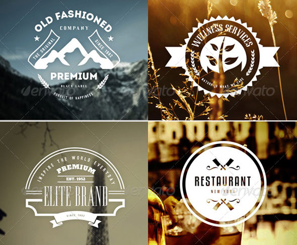 45 Vintage Labels & Badges Logos Bundle