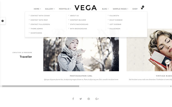 vega-theme