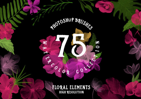 75 Photoshop Brushes Watercolor Collection