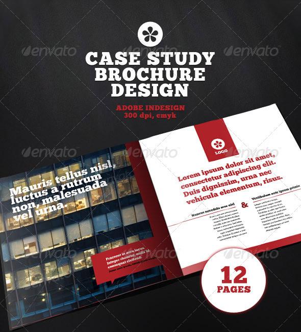 Professional Case Study Brochure Design