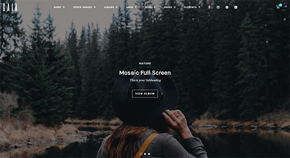 Gaia - Photography and Stock Images WordPress Theme