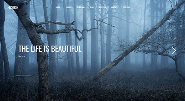 Fusion - Responsive Photography & Portfolio WordPress Theme