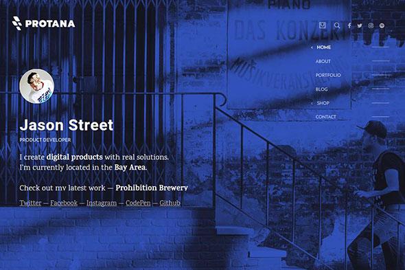 Protana - A Portfolio Theme for Online Professionals