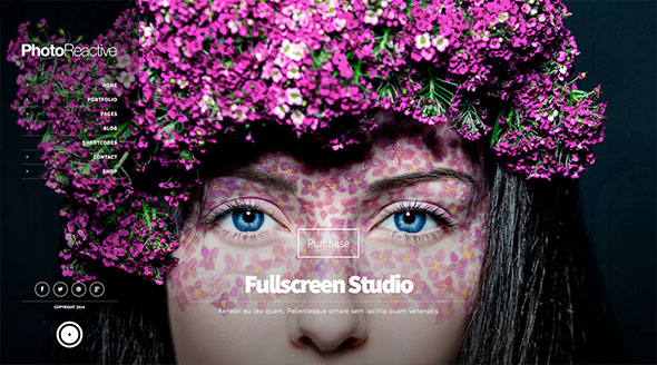 PhotoReactive - Fullscreen Studio for WordPress