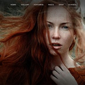 30 Seriously Cool Fullscreen Wordpress Themes 2017
