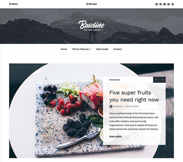 Baseline - Magazine WordPress Theme