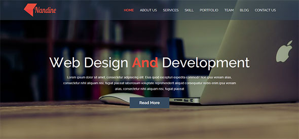 Nandine - Responsive Portfolio And Blog Multipage HTML5 Template