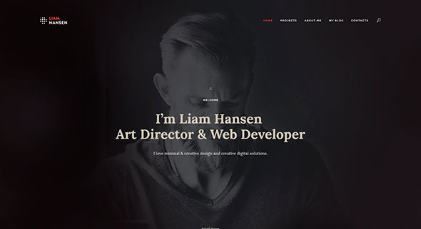 Liam - HTML Creative Freelancers & Agency Template