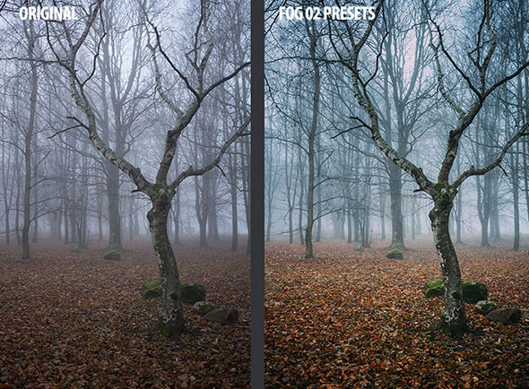 25 Chasing Fog Lightroom Presets