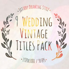 25 Wonderful Wedding Video After Effect Templates