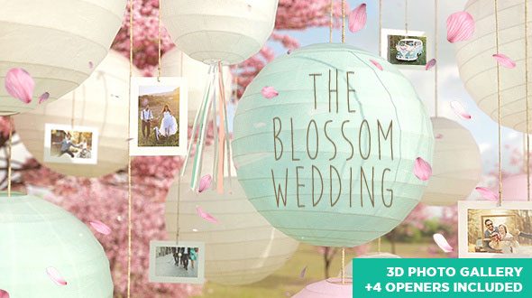 The Blossom Wedding - Photo Gallery Slideshow