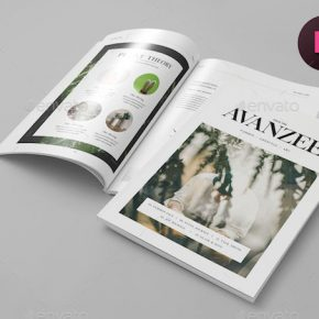 20 Striking Minimal Magazine Design Templates
