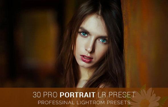 30 Pro Portrait Lr Preset