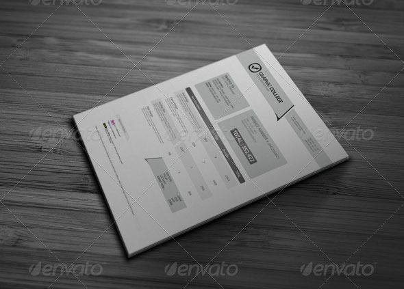 Professional Invoice Template Vol.2