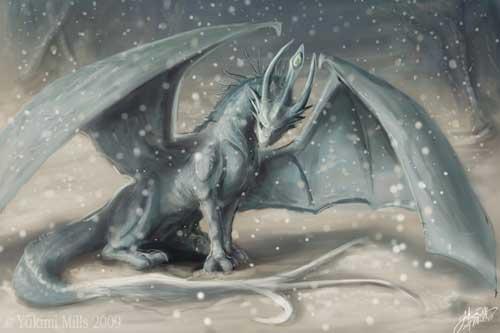 WinterDragon74