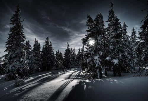 WinterMagic36