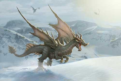 snowdragon53