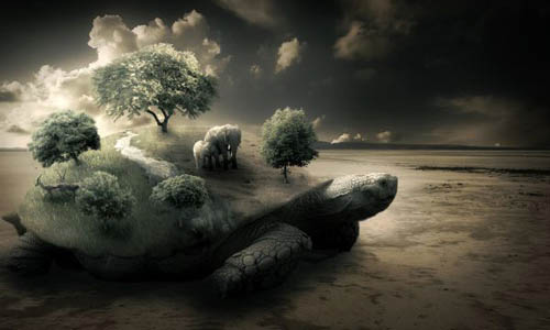 Create a Surreal Turtle Image37