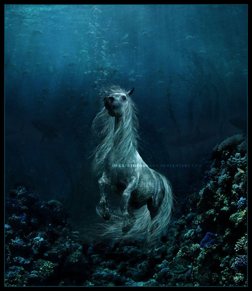 The_Sea_Horse_by_duckiethedonkey16