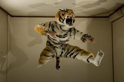 crouching_tiger_hidden_strobist_7