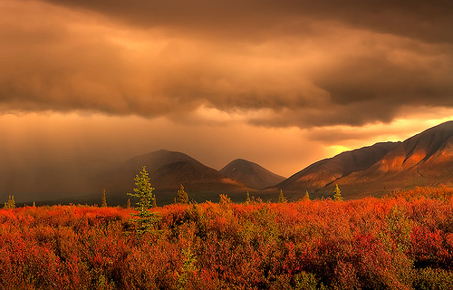 rain_storm_over_tundra_10