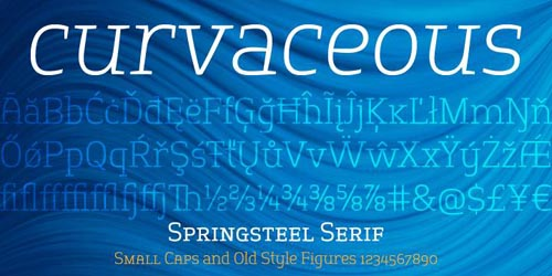springserif-poster2-24
