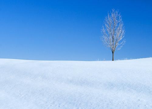winters_landmark_29