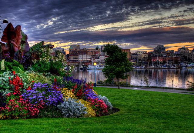 City of Gardens47