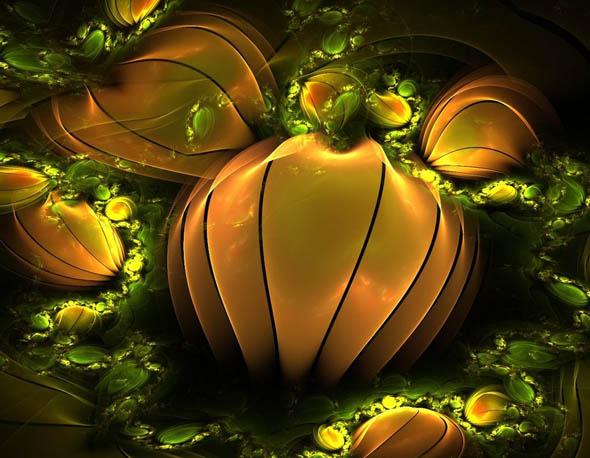 Pumpkin Patch31