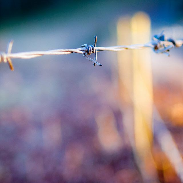 barbed_wire_bokeh_12