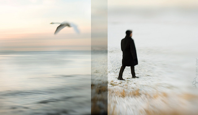 diptych_photography_1