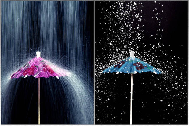 diptych_photography_10